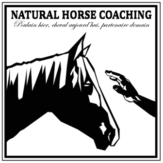 Natural Horse Coaching